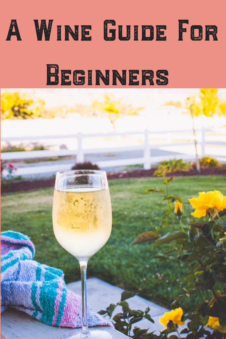Do you know what to look for in a glass of wine?! This wine guide for beginners gives you tips for different types of wine! Cheers